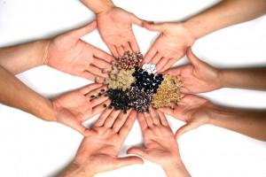 Izmenjava semen