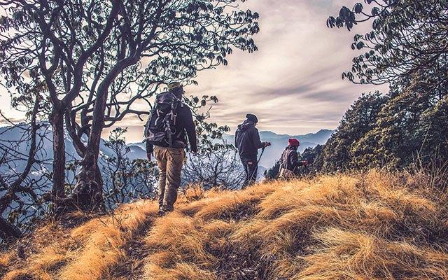 Hoja v gore